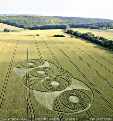 a2d9d6ef084323cd603e30eddc5fa22a--crop-circles-ancient-aliens.jpg
