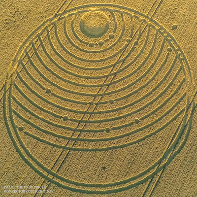 Crop circle Woodway Bridge, nr All Cannings, Wiltshire. Reported 24th August (2).jpg