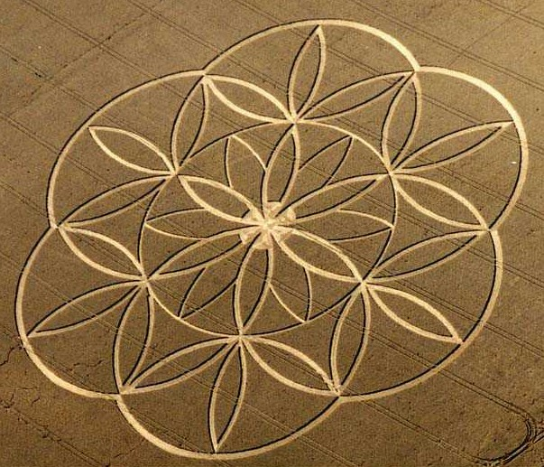 Flower of lifce crop circle.jpg