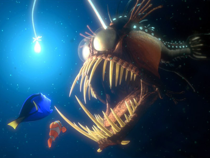 finding-nemo-wallpaper-004-800.jpg